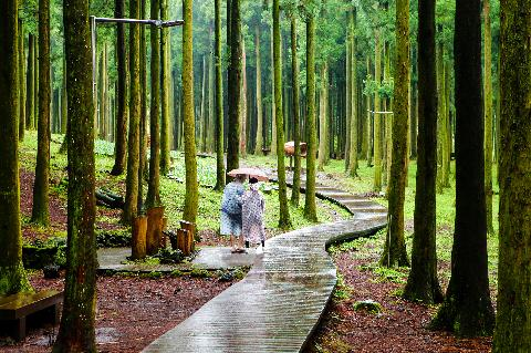 On rainy autumn days, recommended famous sites to visit 대표이미지